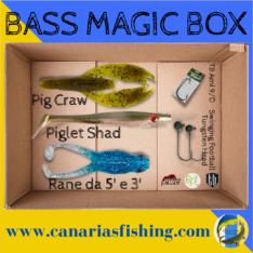 Bass Magic Box